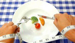 Трехдневная диета