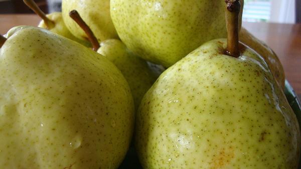 Можно ли поправиться от фруктов: список для похудения